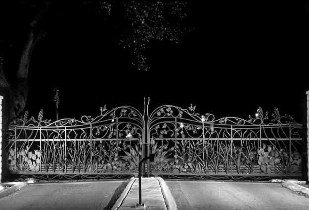 Zilker Botanical Gate: night view
